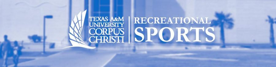 Image+courtesy+of+TAMU%3DCC+Rec+Sports%2FTAMUCC.EDU%0AThe+Department+of+Recreational+Sports+offers+a+variety+of+classes+and+programs+to+students+looking+to+live+a+healthier+lifestyle.+