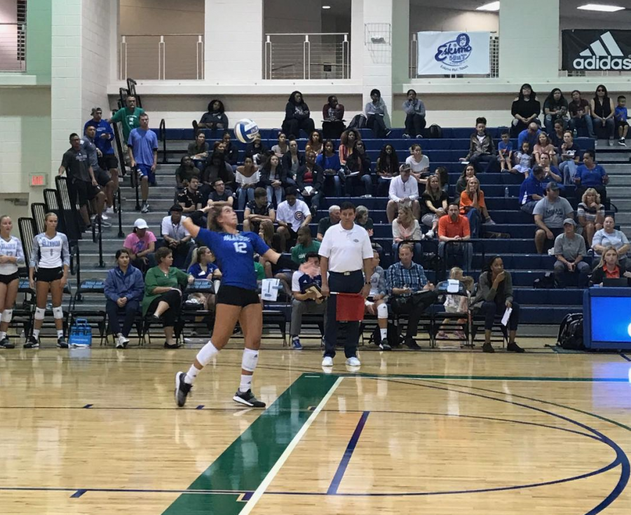 Sophomore+Jenna+Krenek%2C+number+12+and+libero+for+the+Islanders+Volleyball+team%2C+serving+against+the+University+of+Miami.+Photo+by+Sierra+Lutz.
