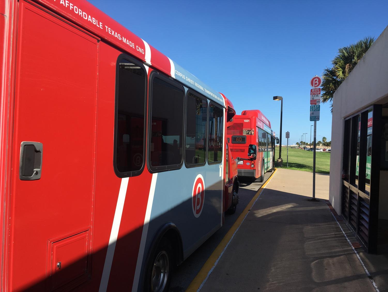 Kedran Wade/ISLAND WAVES - The university bus stop