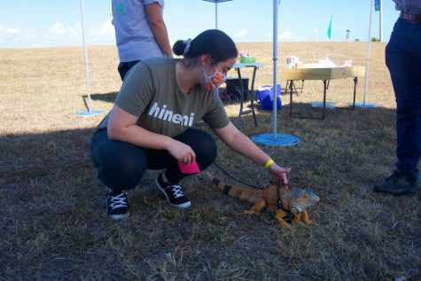 A student petting an iguana at the Islander Wind Jam.